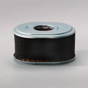 Filtr powietrza P786789